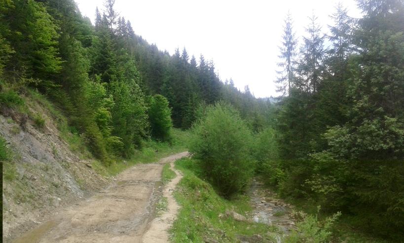 отдых в черновицкой области у минерального источника